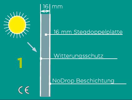 Glashausexperte_Palmen_16mm_Alltop_Plexiglas__Grafik.png