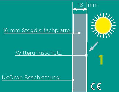 Glashausexperte_Palmen_16mm_Makrolon__Grafik.png