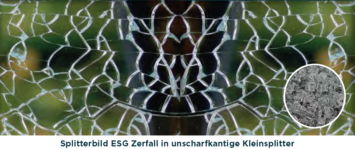 Glashausexperte_Palmen_Floatglas_ESG_Splitterbild.png