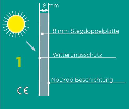 Glashausexperte_Palmen_Makrolon_8mm_Stegdoppelplatte_Grafik.png