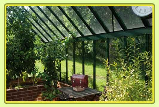 Victorian-Classic-Greenhouse-Innenansicht3.jpg
