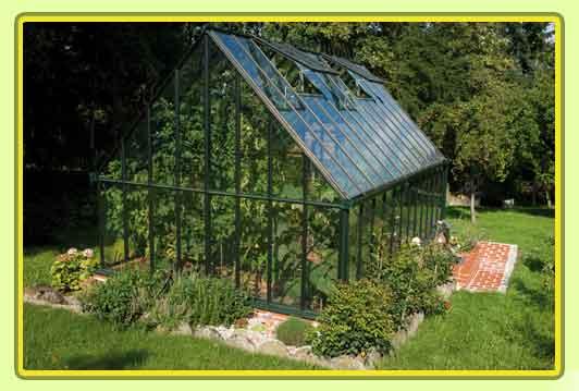 Victorian-Classic-Greenhouse-traegt-erste-Fruechtet.jpg