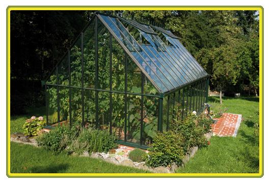 Victorian-Classic-Greenhouse-traegt-erste-Fruechtet.png